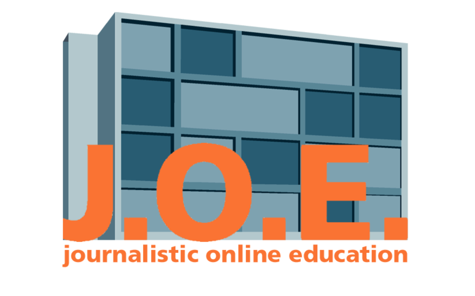 BEITRAGSBILD Journalistin online education